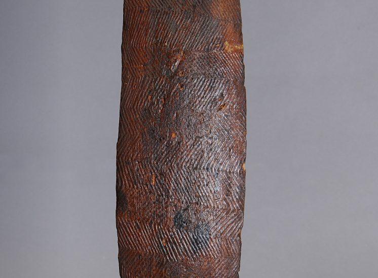 Aboriginal bardi shield Western Australia
