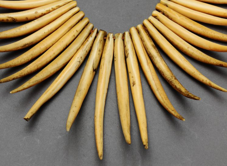 Fijian Tooth Necklace